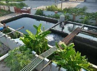《广州市城镇污水处理提质增效三年行动方案(2019-2021年)》近日通过审议