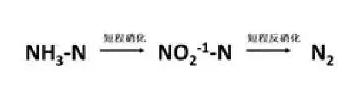 SHARON工艺分子式