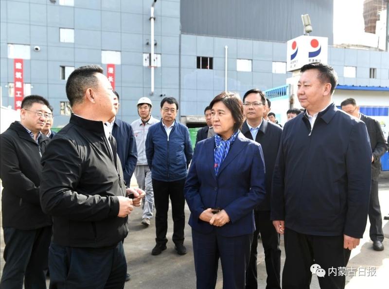 自治区党委副书记了解企业技术路线、环保装置等方面情况